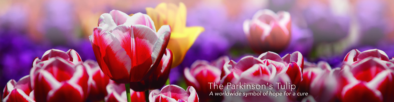 The Parkinson Tulip: a worldwide symbol of hope for a cure